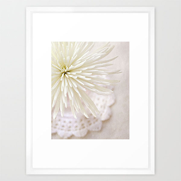 LP White Mum- Floral Still Life Photo - Kelly*N Photography - 2