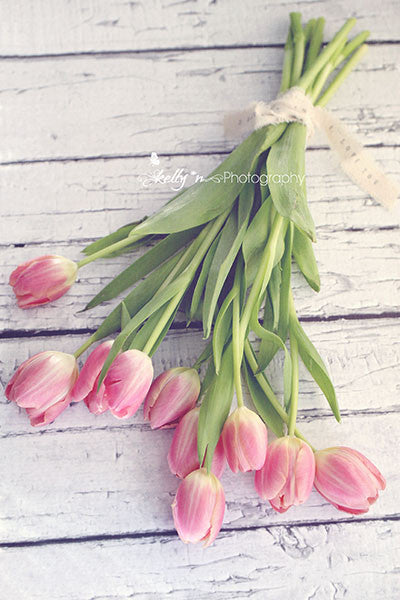 Love Tulips- Floral Still Life Photo - Kelly*N Photography - 1