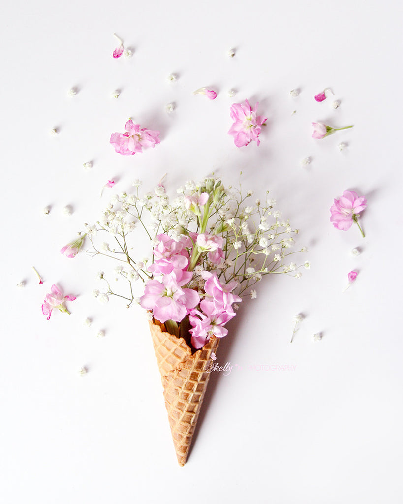 Stock Flower Cone- Floral Still Life Photo - Kelly*N Photography - 1