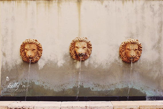 Three Lion Fountain - Canvas Gallery Wrap - Kelly*N Photography - 2