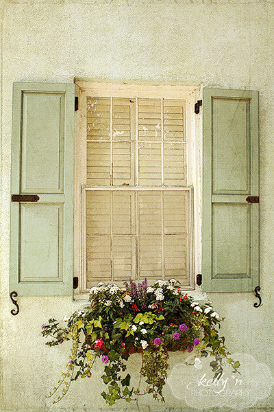 Vintage Windowbox- Window Photograph - Kelly*N Photography - 1