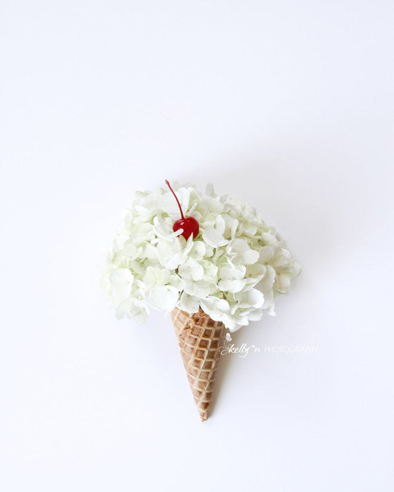 Flower Cone - Floral Still Life Photo - Kelly*N Photography - 1