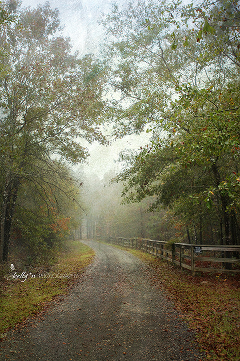 Foggy Road - Landscape Photography