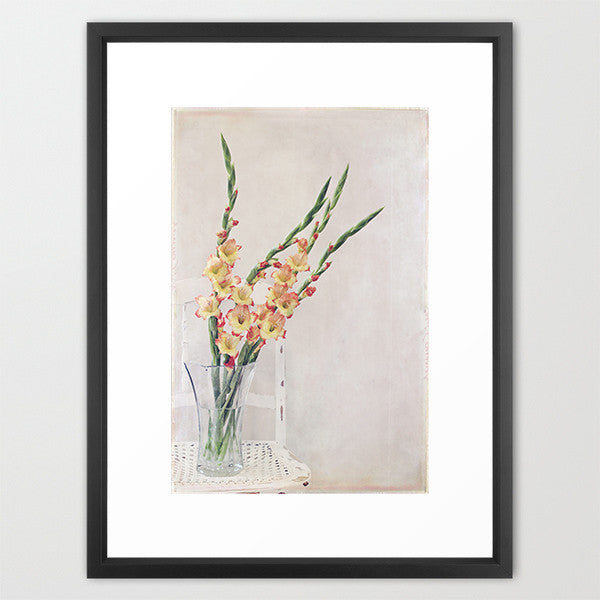 Gladiolus Chair- Floral Still Life Photo - Kelly*N Photography - 3