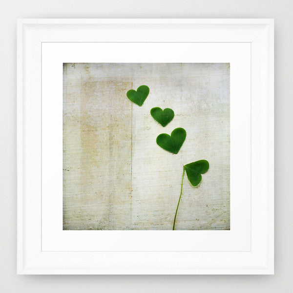 Love and Luck- Shamrock Photograph - Kelly*N Photography - 2