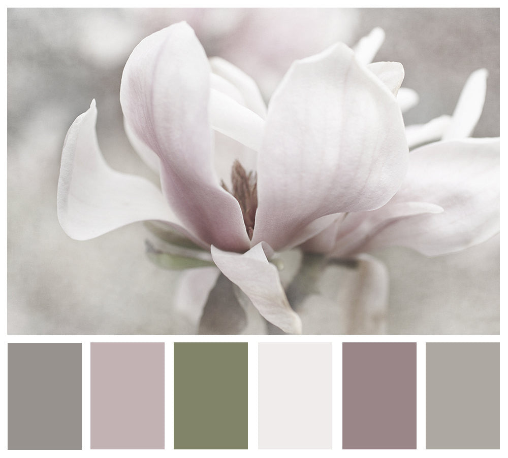 Moody- Magnolia Flower Phtograph - Kelly*N Photography - 3