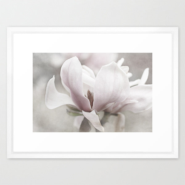 Moody- Magnolia Flower Phtograph - Kelly*N Photography - 2