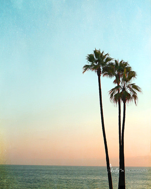 Palm Sunset- Palm Tree Photograph - Kelly*N Photography - 1