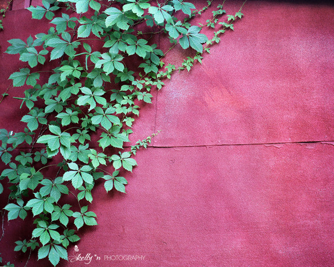 Red Wall - Nature Photography - Kelly*N Photography - 1