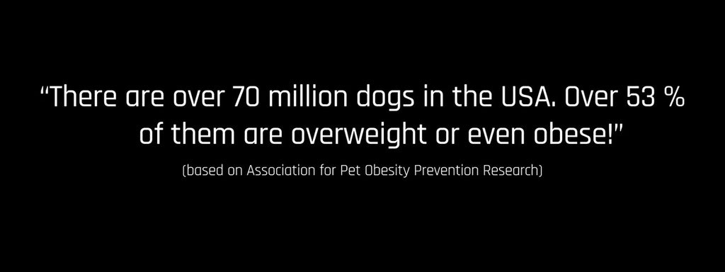 Are you sure that your four-legged buddy is not overweight?