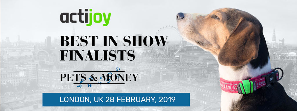 Actijoy was selected as one of the 12 Best in Show finalists at Pets & Money Summit!