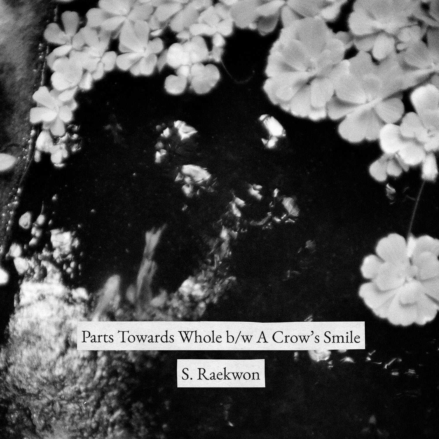 Parts Towards Whole b/w A Crow's Smile