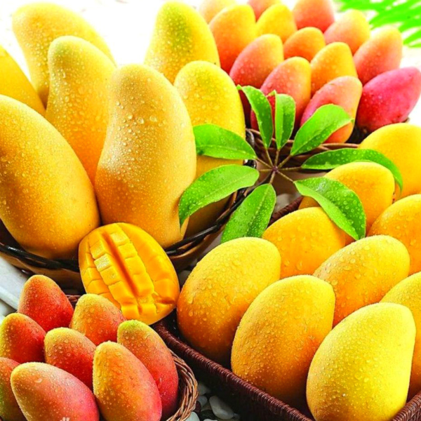 Sweet Mango by Capella Paragon Flavours