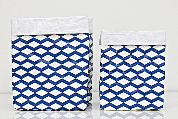 Plant Bag Blue & White Set of 2.  Sml & Med