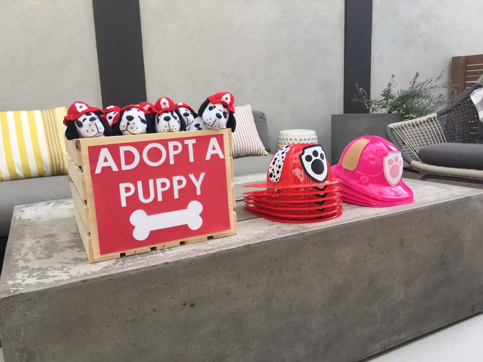 paw patrol party adopt a puppy party hats