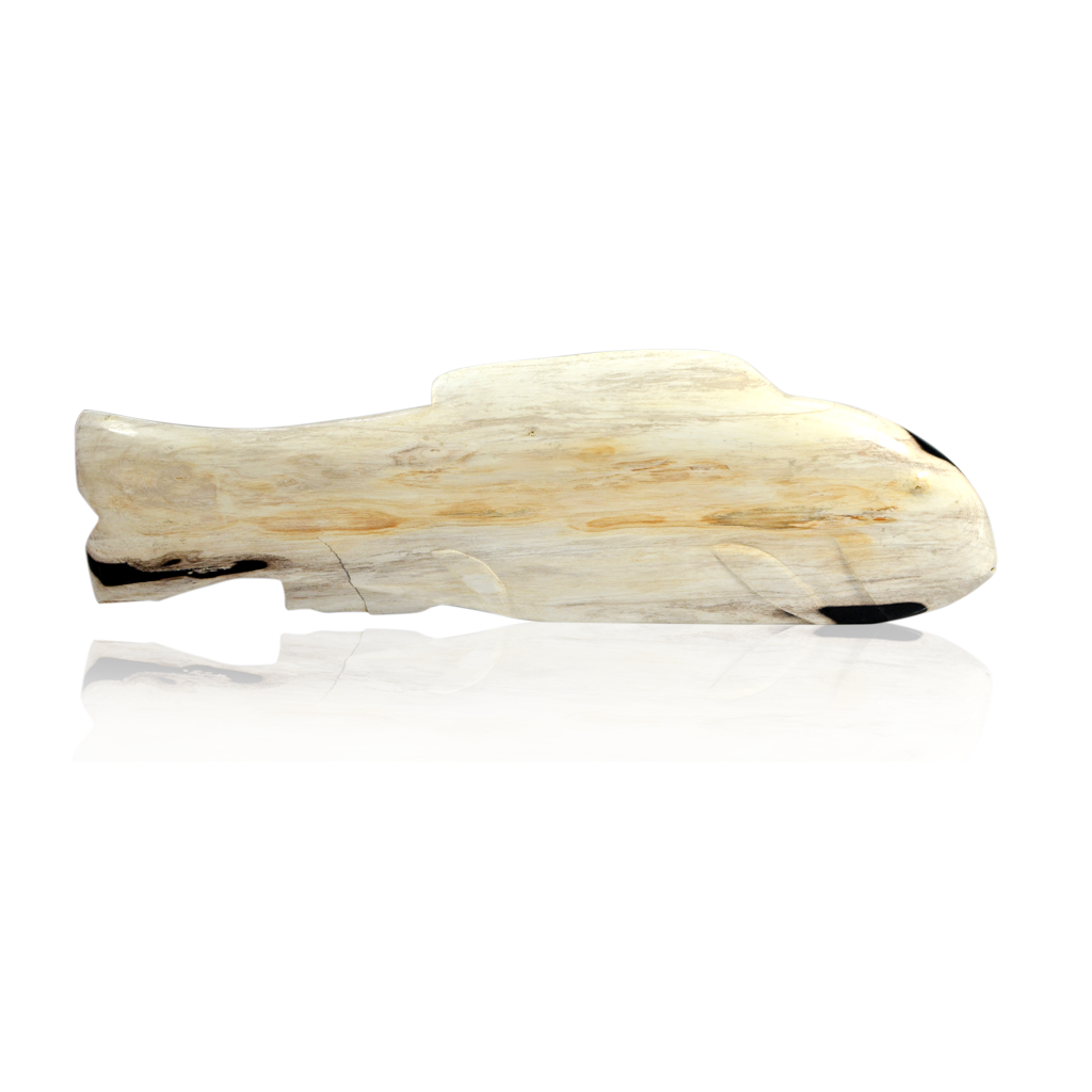 Petrified Wood Fish Objet - White