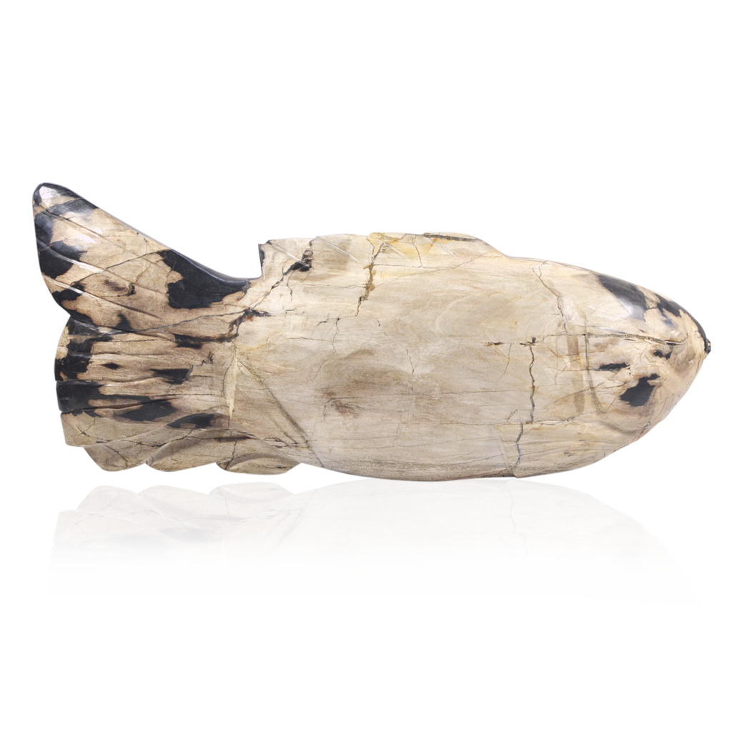 Petrified Wood Fish Objet - Black