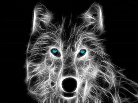 Toile Wolf fractal