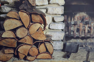 Types Of Wood You Shouldn't Burn