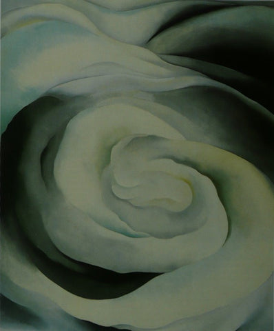 Abstraction White Rose Georgia O'keeffe