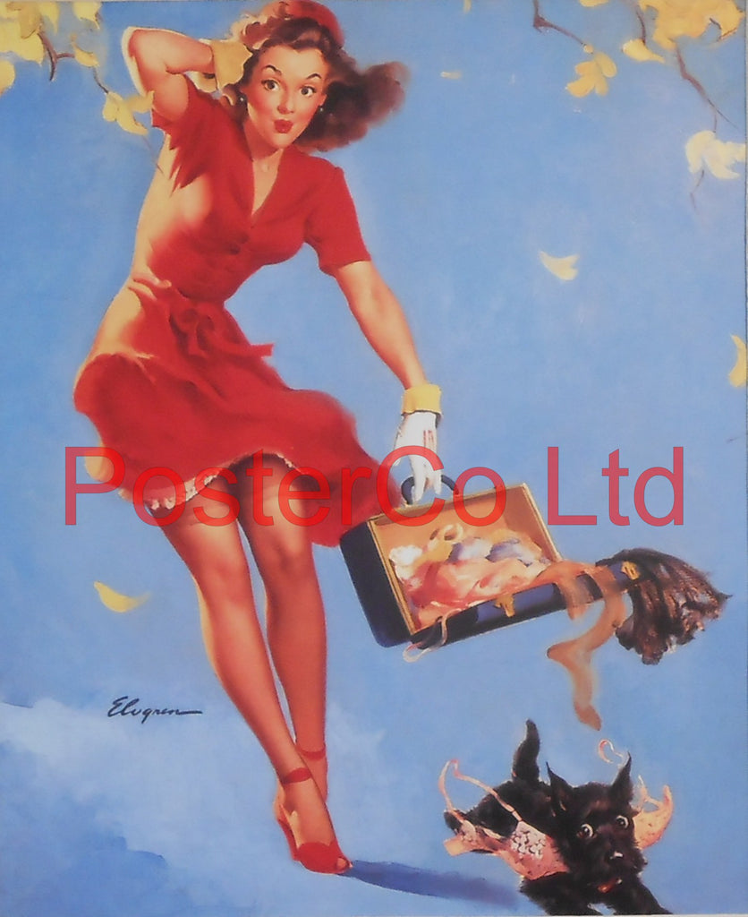 "Windy Day Pin Up (Gil Elvgren)  - Framed Picture - 16""H x 12""W"