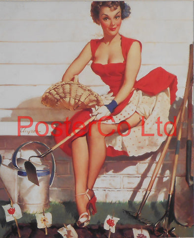 "How Does Your Garden Grow Pin Up (Gil Elvgren)  - Framed Picture - 16""H x 12""W"