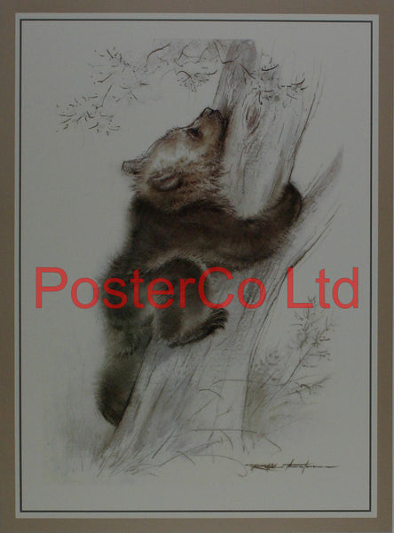 "Determination (Bear Cub) - Ralph Thompson - Royle Publications - Framed Print - 20""H x 16""W"