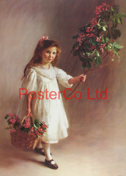 "Chestnut Blossom (Child Portrait) - John Henry Lorimer - Royle Publications - Framed Print - 20""H x 16""W"