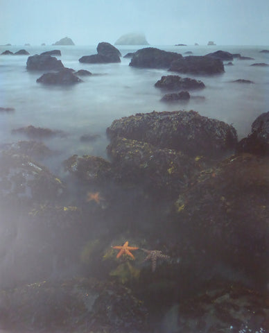 California Stateparks (Starfish) David Muench 1989 Mirage (Genuine and Vintage) Crate3 B10