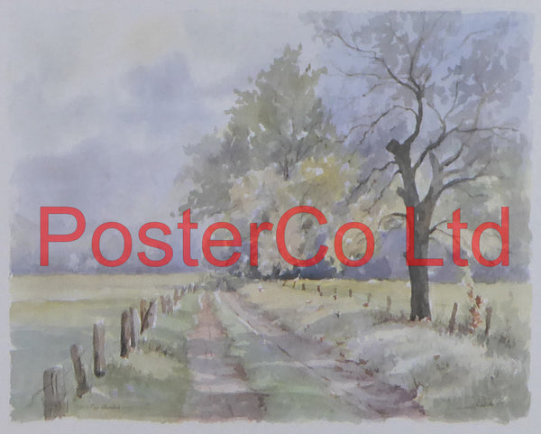 "Country Lane - Framed Print - 12""H x 16""W"