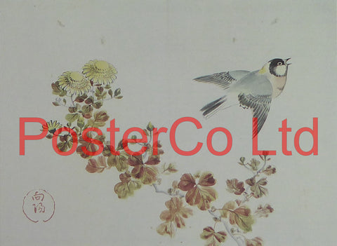"Chinese Great tit and Chrysanthemums (Oriental Art) - Koyo - Framed Plate - 12""H x 16""W"