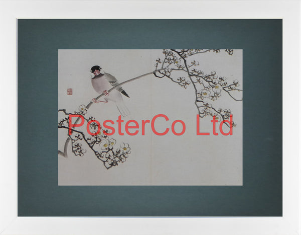 "Java Sparrow and Branch of Plum (Oriental Art) - Koyo - Framed Plate - 12""H x 16""W"