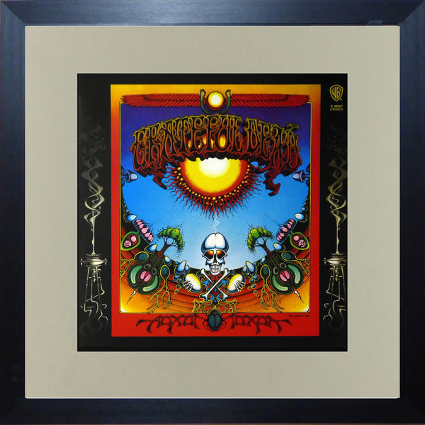Grateful Dead (Album Cover Art) Framed Print