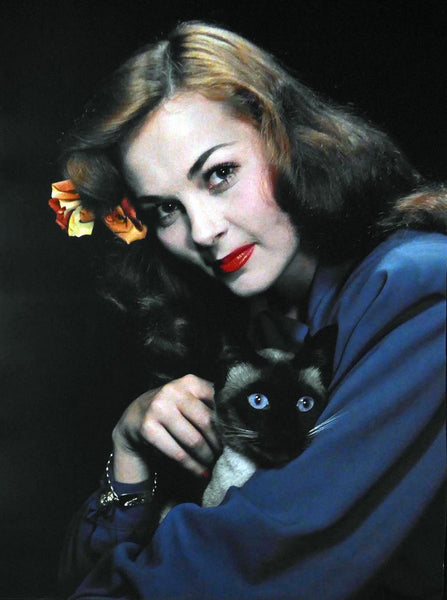 unknown lady in blue tyop with Cat