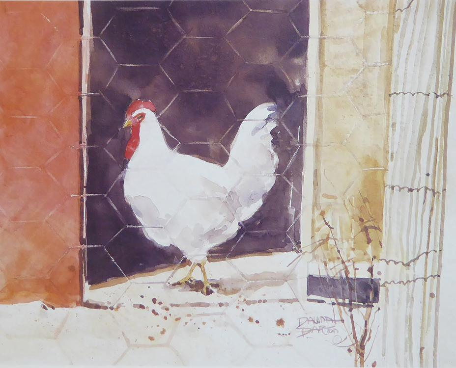 White hen in a cage