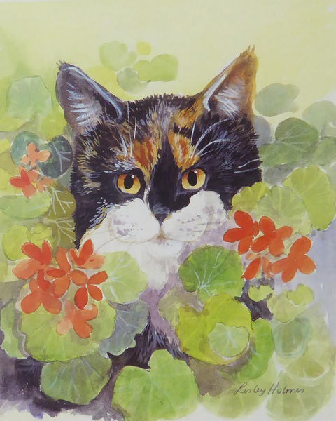 Tortoiseshell cat in geraniums by Lesley Holmes (1)