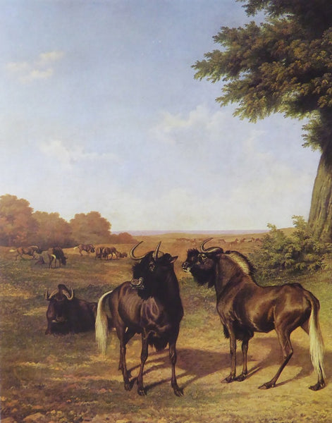 White tailed Gnus Jacques Laurent Agasse