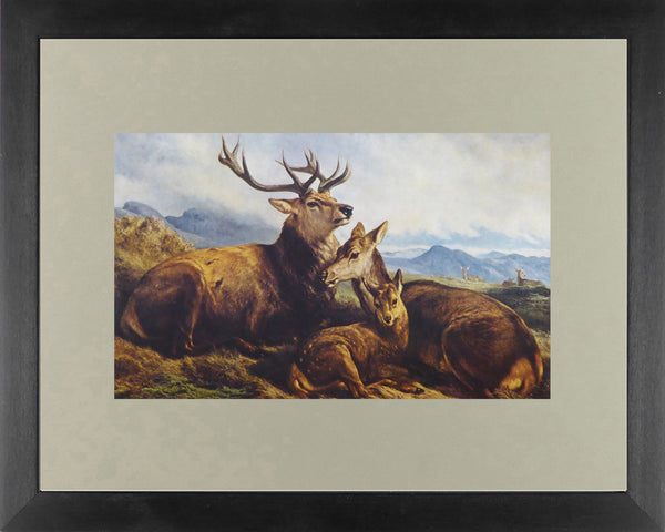 Morning with the Wild Red Deer Samuel John Carter