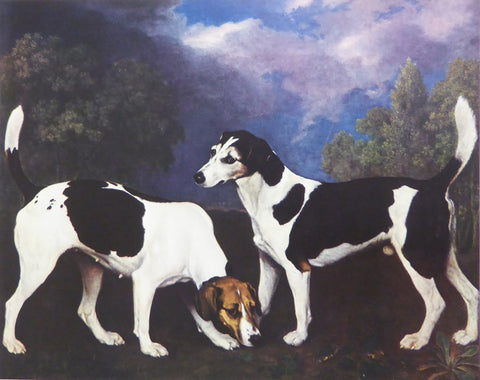 A Hound and Bitch in a landscape  George Stubbs