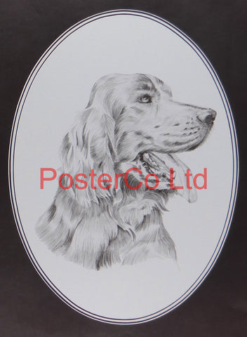 "Dog Portrait - Hennesey - Framed Print - 16""H x 12""W"