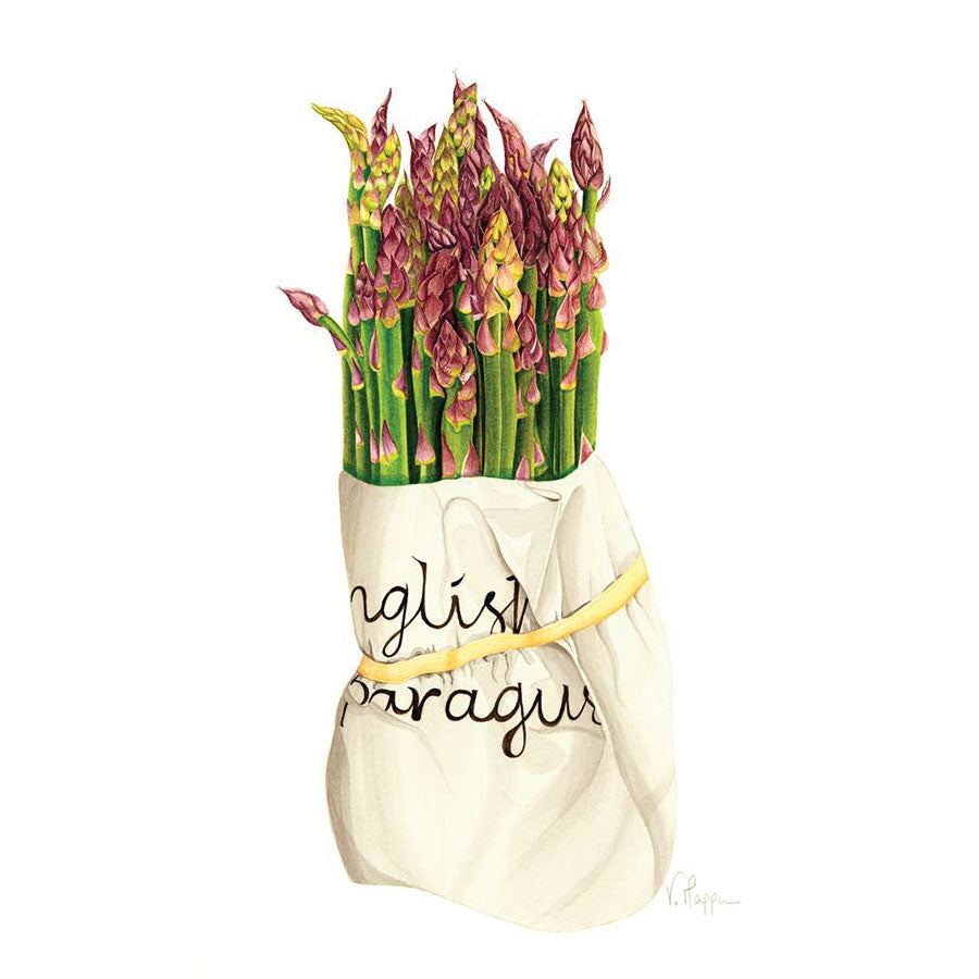 Asparagus By Vicky Mappin