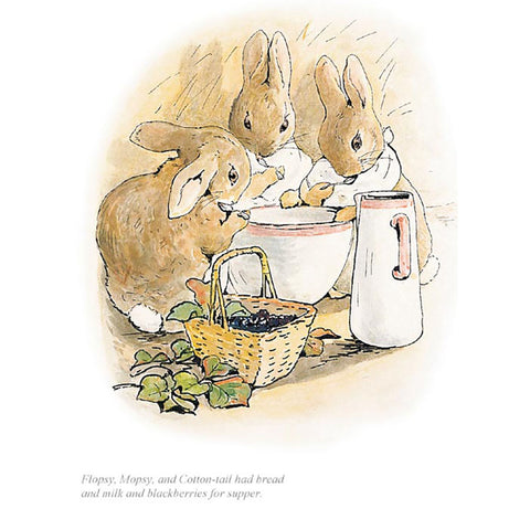 Flopsy, Mopsy And Cotton-Tail had Bread And Milk