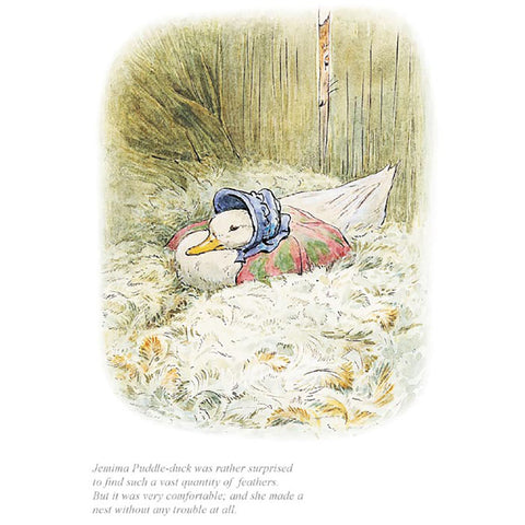 Jemima Puddle Duck Was Rather Surprised To Find A Quantity Of Feathers By Beatrix Potter