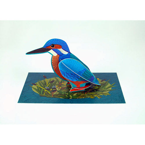 Kingfisher Die Cut Pop Out Greeting Card
