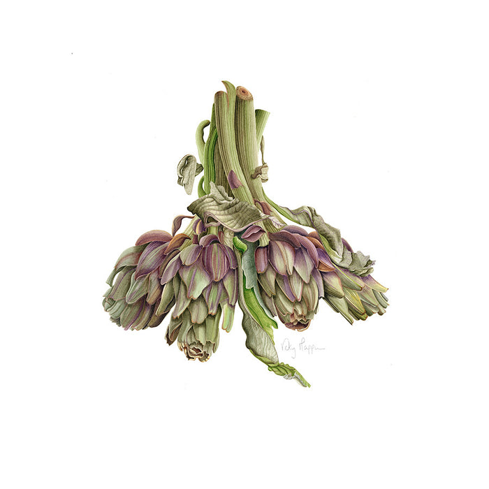Bunch of Artichokes By Vicky Mappin