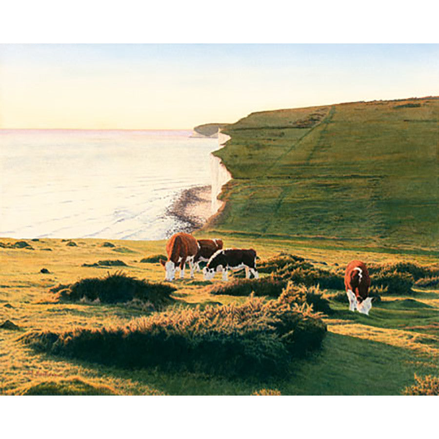 Cliffs and Cows By Michael Embden