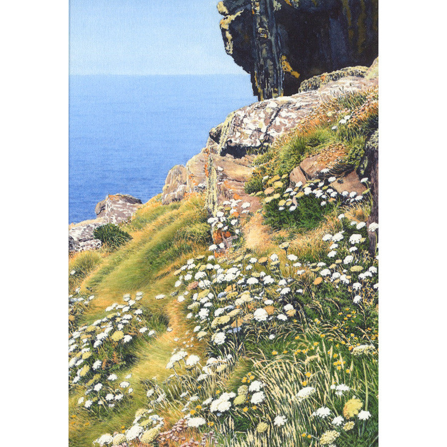 Cliff Top, Cornwall By Michael Embden