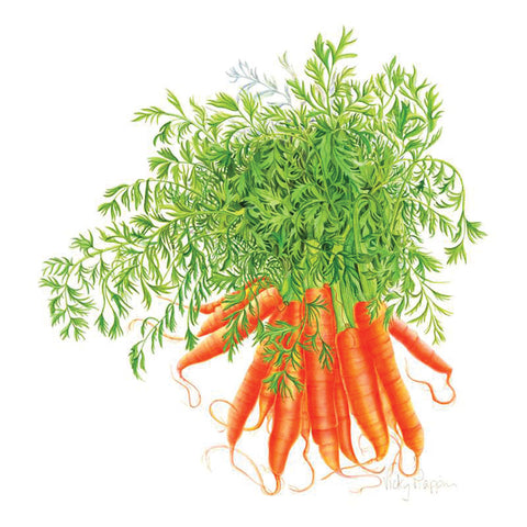 Carrots By Vicky Mappin