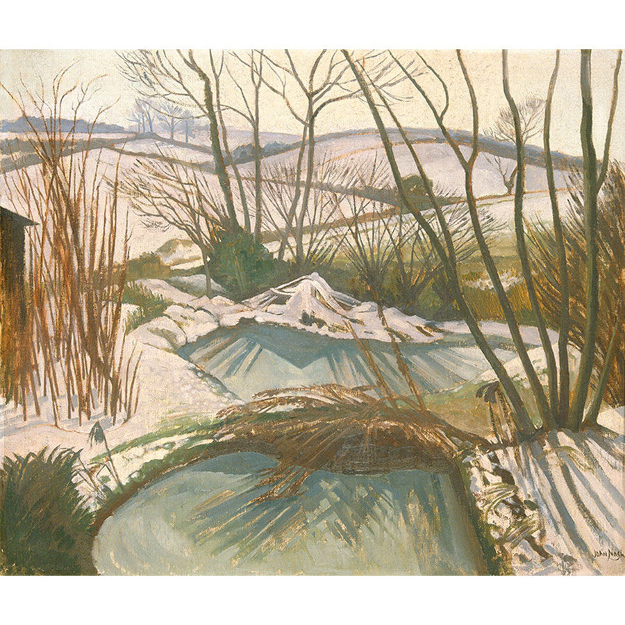 Frozen Ponds By John Nash