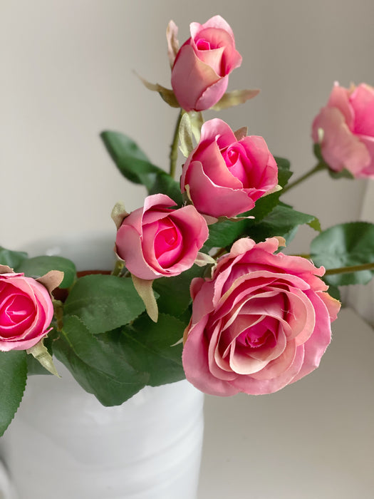 The Pink Rose Bunch